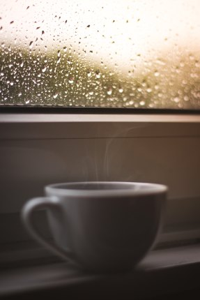 tea cup on a rainy day