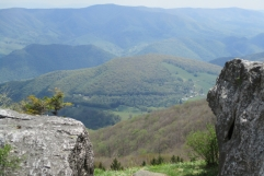 Valley view from Spruce Knob Boulder Field